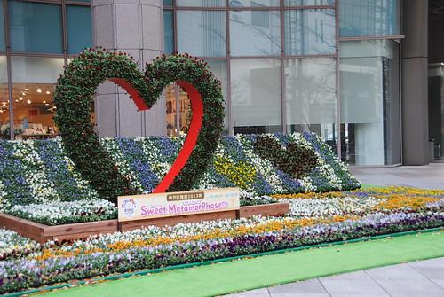 Dec 2013 Kobe 004