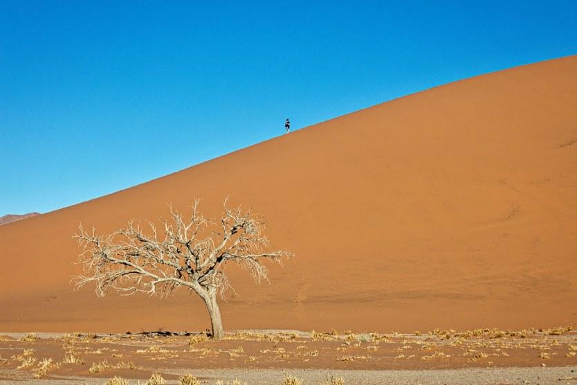 Dune 45, Sossusvlei National Park.