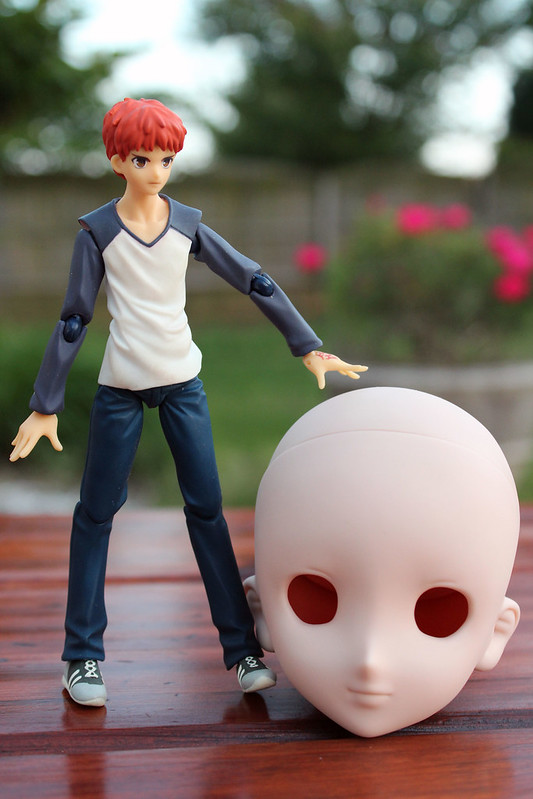 shiro head
