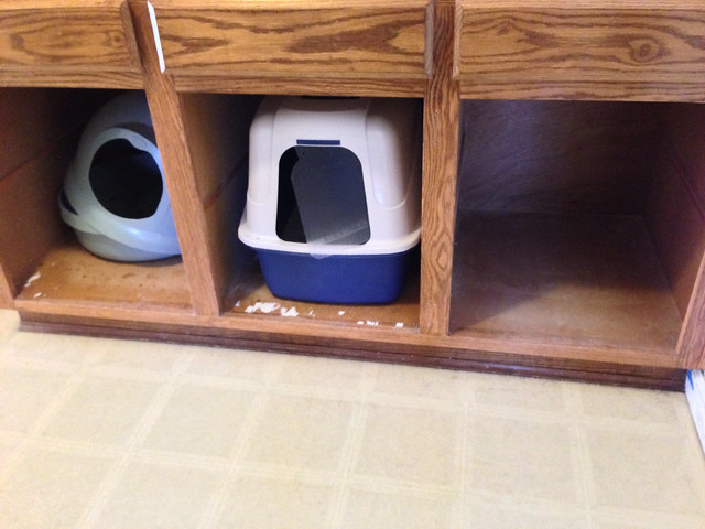 The litter box area in the laundry (before)