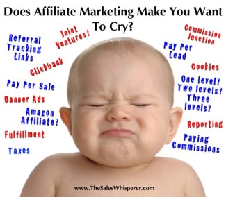 14172115243 69bd787cd2 - Maximize Your Affiliate Marketing Potential With These Suggestions