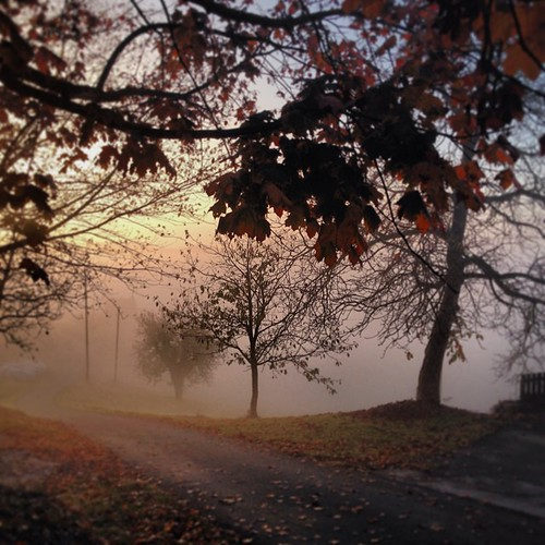 The fog is coming closer… by SpatzMe