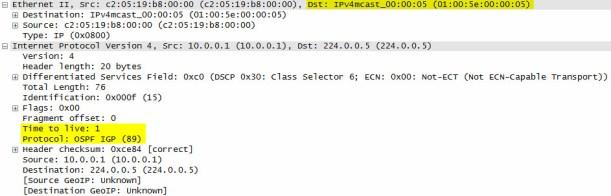 OSPF-WS-2