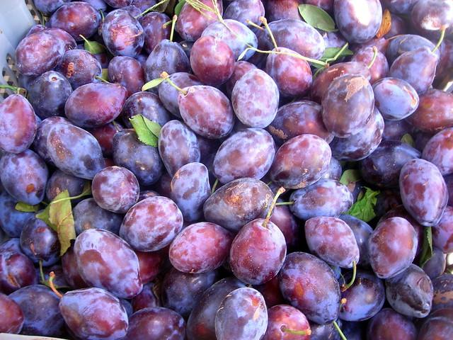 Red Italian plums