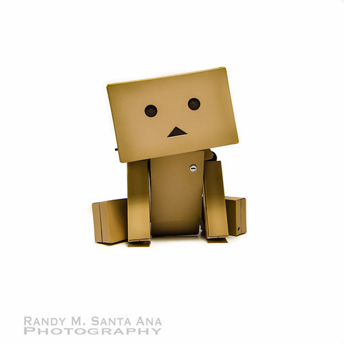 Danbo Just Sitting.