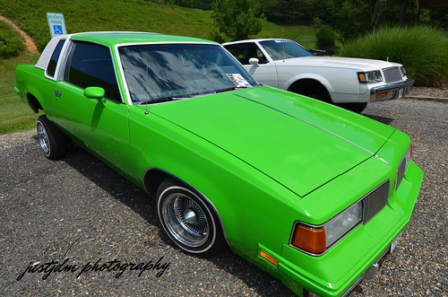 apple green regal (3)