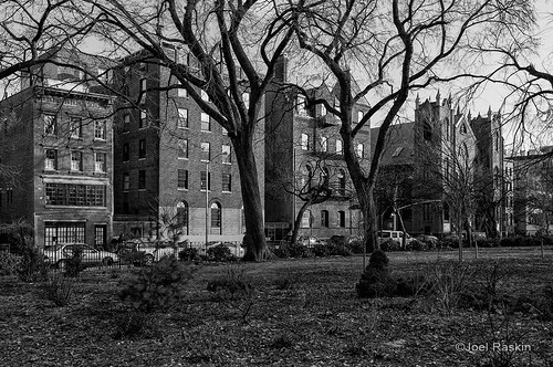 Tompkins Square Park by Joel Raskin