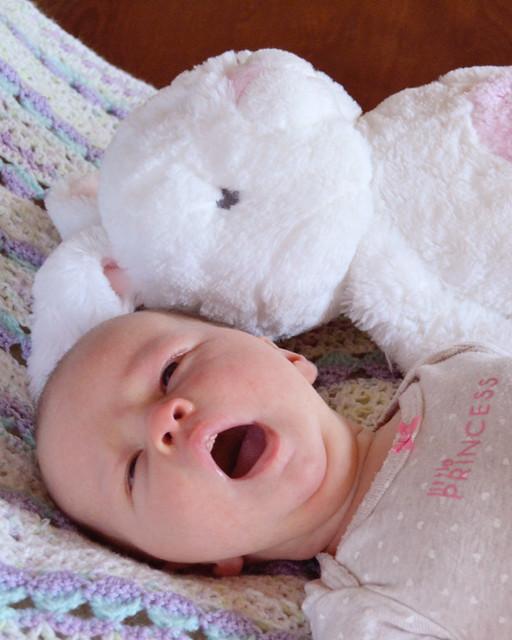 one month yawn