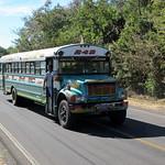 Transit Bus