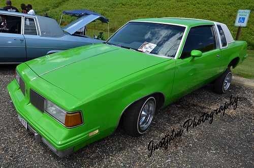 apple green regal (2)
