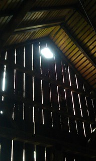 High up in the barn