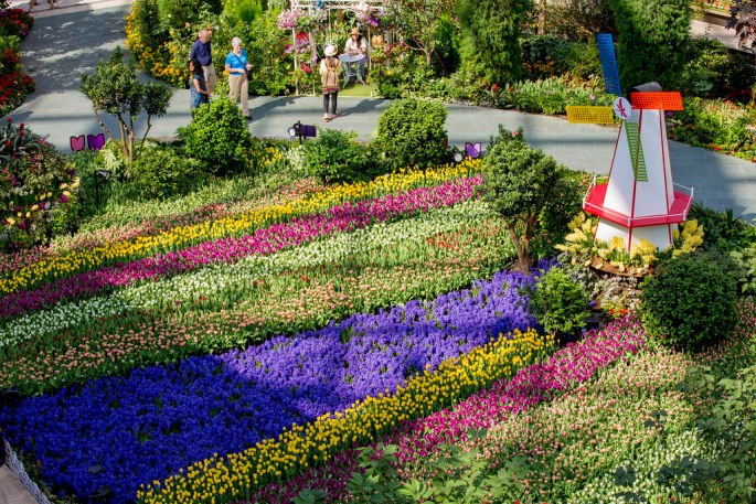 Flower Dome Floral Display 07