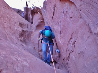Fred Rappeling Miss Piggy