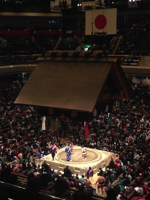 Sumo Experience