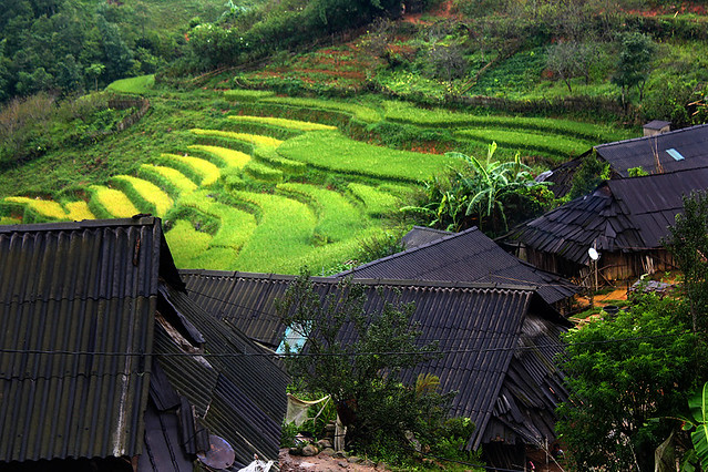 Sapa - Matra Black H'mong village