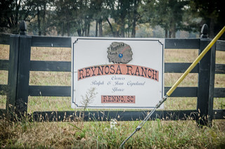 Reynosa Ranch