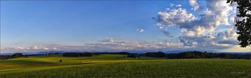 Grünes Land vor dem Gebirge