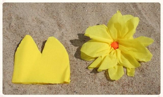 Soorten strandbloemen (4)