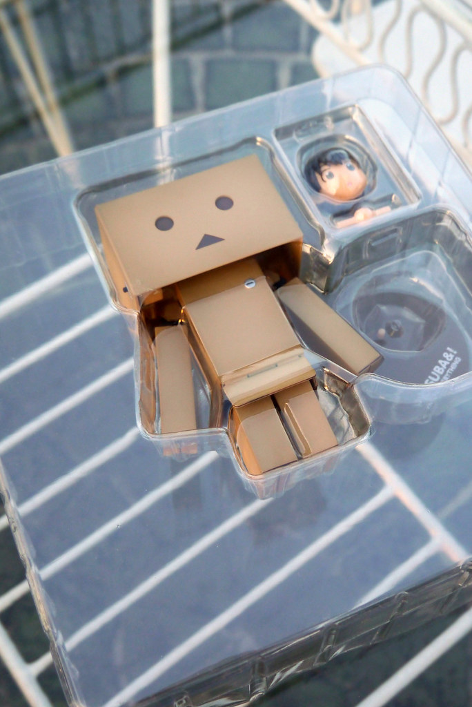 Revoltech Danboard Renewal Package 004
