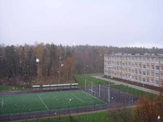 Первые снежинки