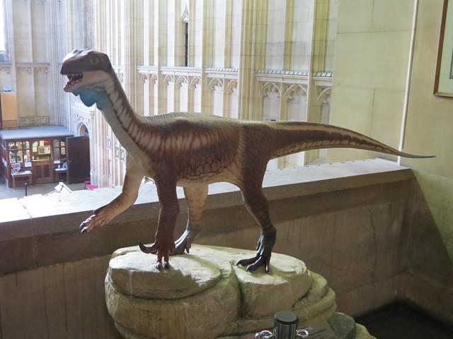 Thecodontosaurus antiquus