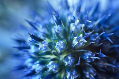 Blue Thing