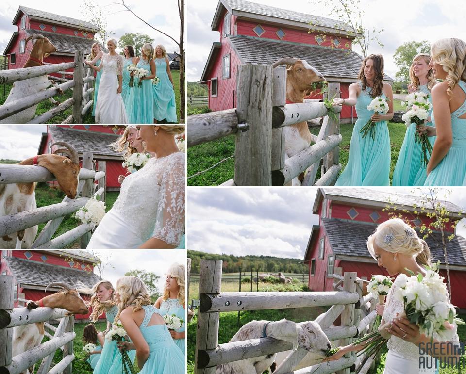 Autumn South Pond Farms Wedding Photography 0030
