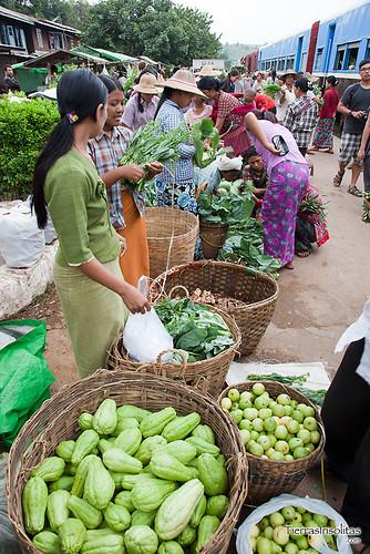 Trekking Kalaw-Inle (día 1) Myanmar