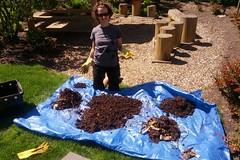 Worm Compost Separation