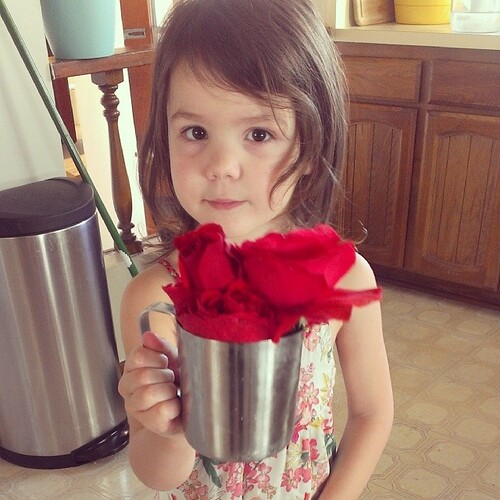 Look, #mama. I picked you #roses... #lovemygirl
