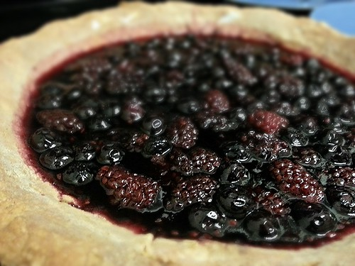 blackberry jello pie by pipsyq