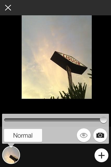 Camera Roll-5528