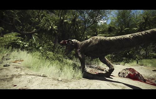 Video Capture - Rex