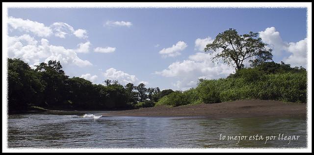 Paseo canoa en Tortuguero, Costa Rica
