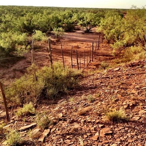 Stamford, Texas ~ Red Dirt #igtexas #texas #rugged #western #summer #hot #heat #desert #scrub #mesquite #landscape #red #barren #lonely #nature #dry