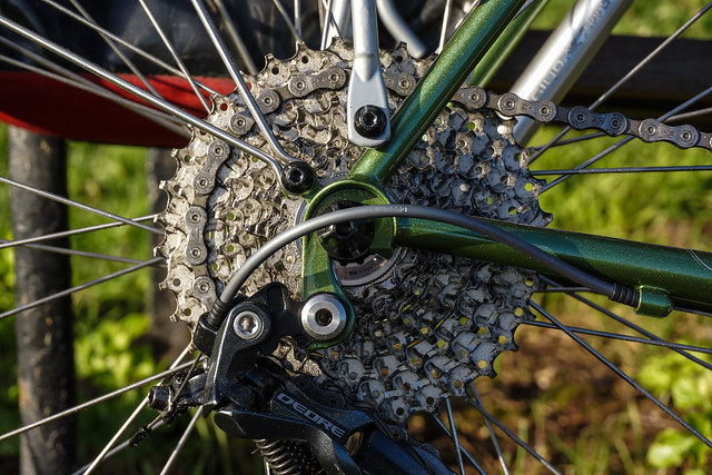 Ridgeback Expedition: rear cassette