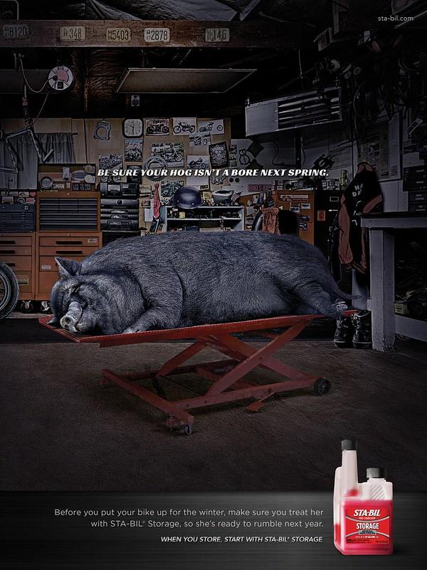 Sta-Bil Storage - Hog