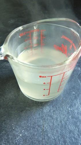 Coconut Vanilla Bean Gelatin 4