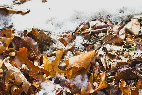 December 12: Weather