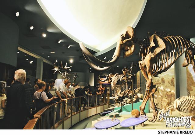 Smithsonian Dinosaur Exhibit Photos Brightest Young Things Stephanie Breijo28