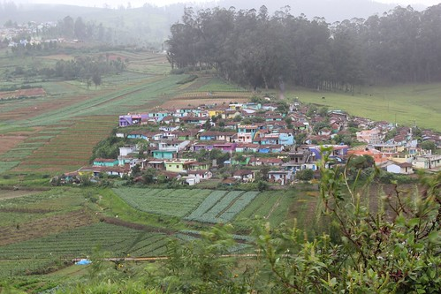 Sholas, Farms and Little villages
