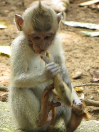 tackling a banana