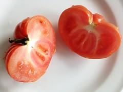 Brandywine? Heirloom Tomato