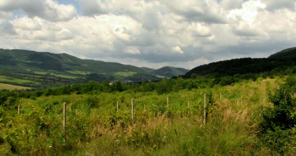 Pohľad do Plachtinskej doliny - Pohanský vrch v strede