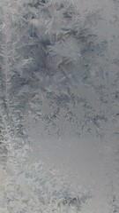 Frosted windows