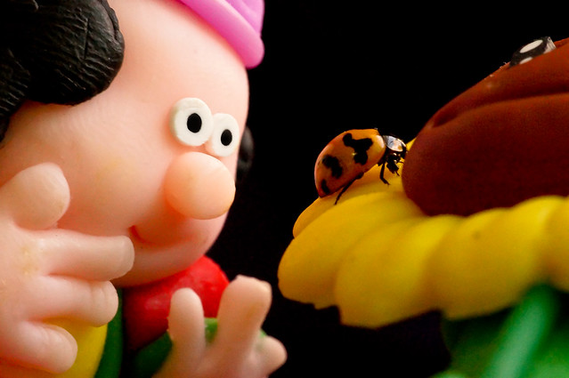 Lady bug on a sunflower pencil topper and an dwarf like man