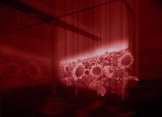 Ralph Ueltzhoeffer: Hologramme