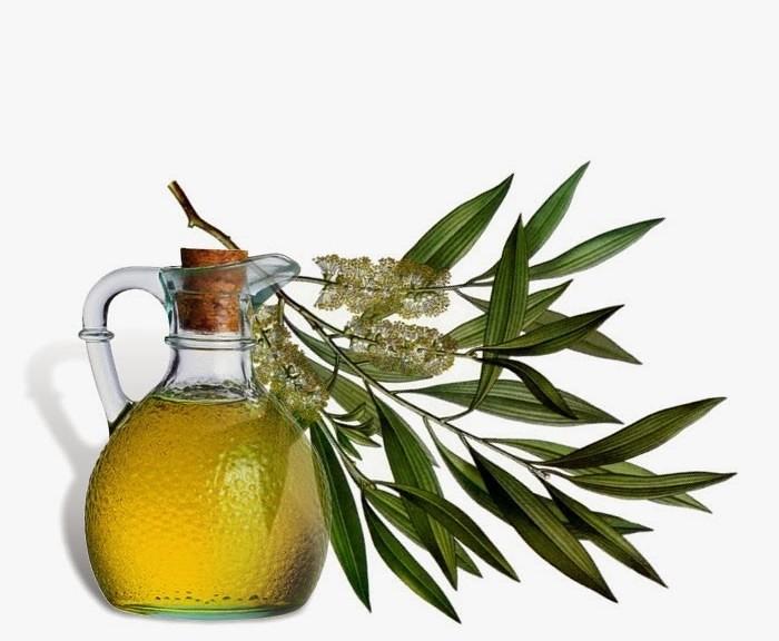 tea-tree-oil-700x576