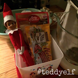 Teddy Bakes Cookies