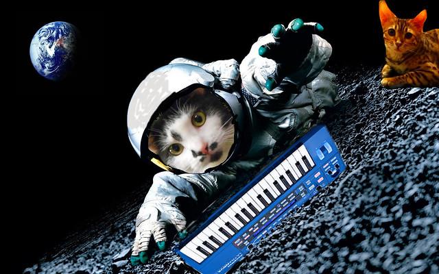 Groove Space Feline